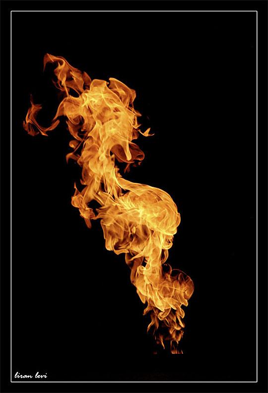 Fire by Liran